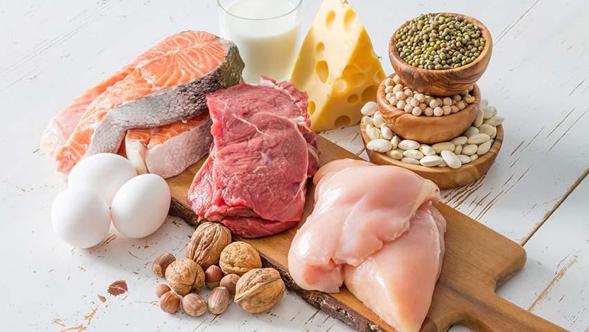 proteínas de origem animal